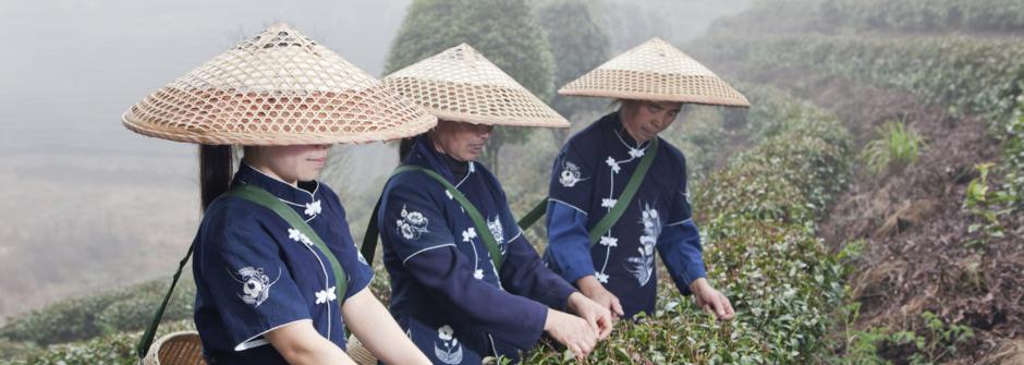 Japan tavel, reise Japan, paketreisen, gruppen reise russisch, авиатур Япония, поездка в Токио