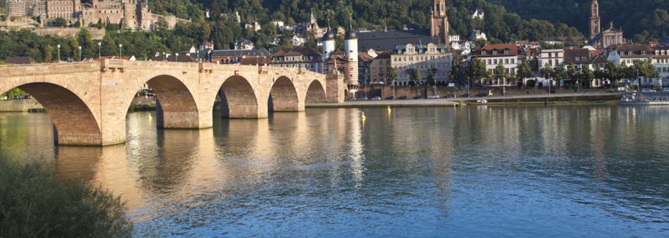 1+1 Bibliothek Foto, Rein tours, однодневный тур, экскурсии по Рейну