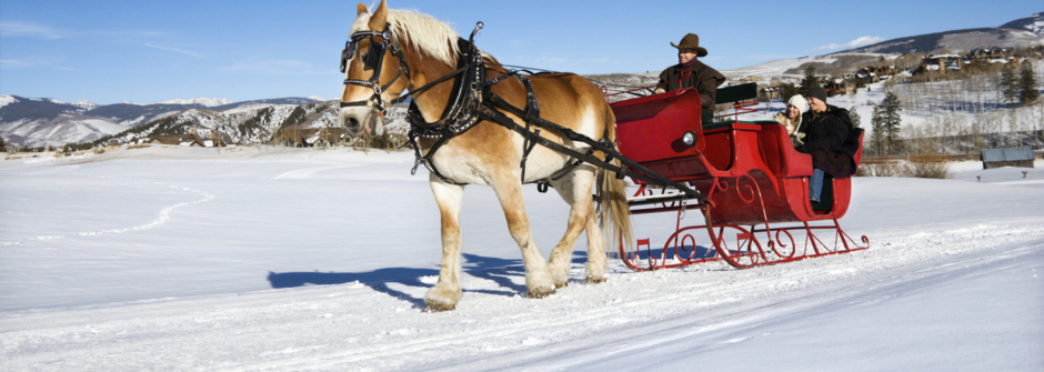 silvester reisen, winter urlaub russisch, russian agency germany, russische gruppen winter, feiern New Year, Santa Klaus, лапландия